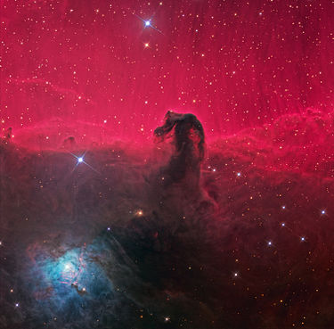 The Horsehead Nebula (also known as Barnard 33 ) is a dark nebula in the constellation Orion.[1] The nebula is located just to the south of the star Alnitak, which is farthest east on Orion's Belt, and is part of the much larger Orion Molecular Cloud Complex. The nebula was first recorded in 1888 by Scottish astronomer Williamina Fleming on photographic plate B2312 taken at the Harvard College Observatory. The Horsehead Nebula is approximately 1500 light years from Earth. It is one of the most identifiable nebulae because of the shape of its swirling cloud of dark dust and gases, which bears some resemblance to a horse's head when viewed from Earth.[2]